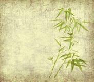 grunge предпосылки bamboo выходит старым иллюстрация штока