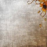 grunge предпосылок текстурирует сбор винограда Стоковые Фотографии RF