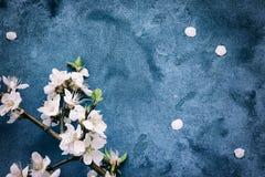 grunge предпосылки флористическое Стоковое фото RF