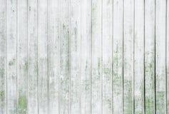 Grunge слезая белизну покрасил предпосылку доск дуба с мхом Стоковая Фотография