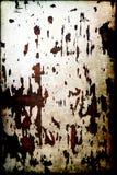 Grunge слезло древесину (текстура) Стоковые Фотографии RF