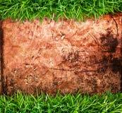 grunge травы предпосылки Стоковая Фотография