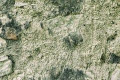 Grunge水泥墙壁 库存照片