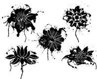 设计要素花grunge油漆向量 免版税图库摄影