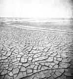 沙漠横向的Grunge图象 免版税库存照片