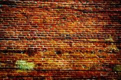 砖grunge 图库摄影