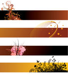 grunge знамен флористическое Стоковая Фотография