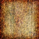 Grunge abstract background with. Leopard pattern vector illustration