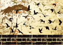 Grunge Abstract Bird And Tree Silhouette Raster Stock Photography