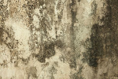 Grunge abstract concrete wall Stock Photo