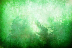 Grunge abstract green vegetation background Stock Image