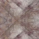 Grunge abstract square brown pattern. On white background. Rough noise design Stock Images