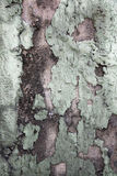 Grunge abstract texture background of old wall Royalty Free Stock Image