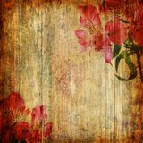 Grunge abstrakt bakgrund med orchiden Royaltyfria Bilder