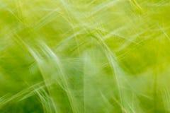 Grunge achtergrond abstract groen malplaatje creatief visueel geklets Royalty-vrije Stock Foto