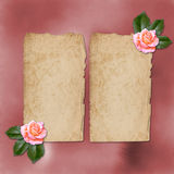 Grunge alienated paper for congratulation Stock Images