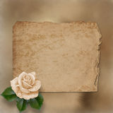 Grunge alienated paper with painting rose Stock Photos