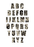 Grunge alphabet army stock images