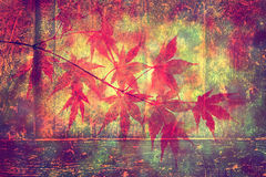 Grunge artistic blurry autumn background Royalty Free Stock Images