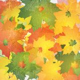 Grunge autumn background Stock Images