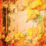 Grunge autumn  background with laeves Stock Images