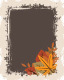 Grunge autumn frame Royalty Free Stock Images