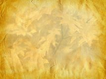 Grunge autumn paper background Stock Photography