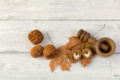 Grunge autumn still life with walnuts Stock Image
