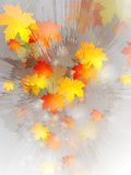 Grunge autumn vector design Stock Photography