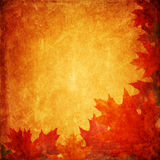 Grunge autumnal background Stock Photography