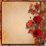 Grunge autumnal background with  bouquet of dahlias Royalty Free Stock Photo