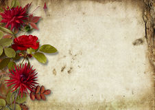 Grunge autumnal background with bouquet of dahlias Stock Images