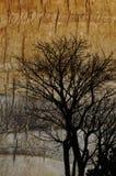 Grunge Bäume Stockbild