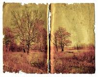Grunge background Royalty Free Stock Image