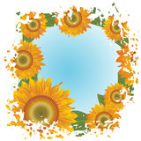 Grunge background with abstract sunflowers Royalty Free Stock Images