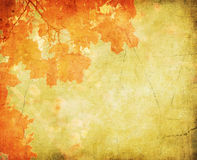 Grunge background with autumn leaves Stock Images