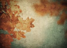 Grunge background with autumn leaves Royalty Free Stock Photography