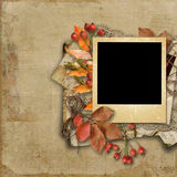 Grunge background with autumn leaves and  old card Royalty Free Stock Photography