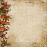 Grunge background with autumn leaves and rowan Royalty Free Stock Image