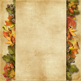 Grunge background with autumn leaves Royalty Free Stock Photos