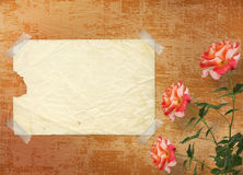 Grunge background with beautiful rose Royalty Free Stock Images