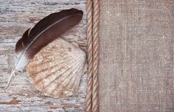 Grunge background with big seashell, rope and feather on sackclo Royalty Free Stock Image