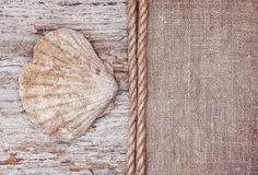 Grunge background with big seashell, rope on sackcloth Royalty Free Stock Image