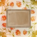 Grunge background for congratulation Stock Images