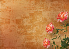 Grunge background for congratulation Royalty Free Stock Photo
