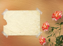 Grunge background for congratulation Royalty Free Stock Photos
