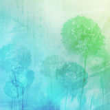 Grunge background with dandelions Stock Images