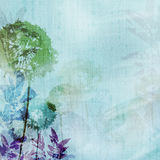 Grunge background with dandelions and leaves Stock Images