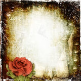 Grunge background with film and rose. Colorful grunge background, dirty surface Stock Photo