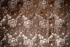 Grunge background - flower pattern Stock Photo